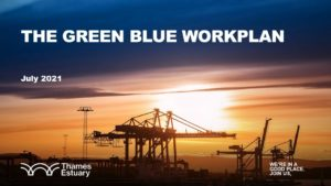 The Green Blue Workplan cover July 2021